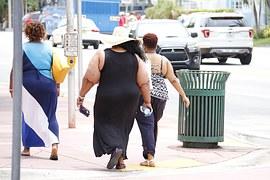 obesity-993126__180